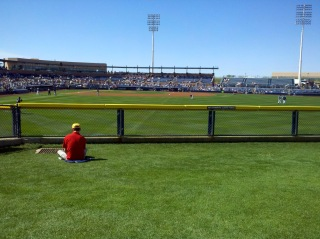 Peoria ballpark outfield grass