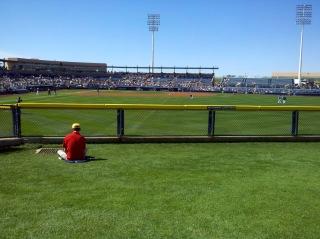 Peoria ballpark outfield grass
